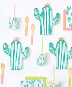 Cactus Party Theme